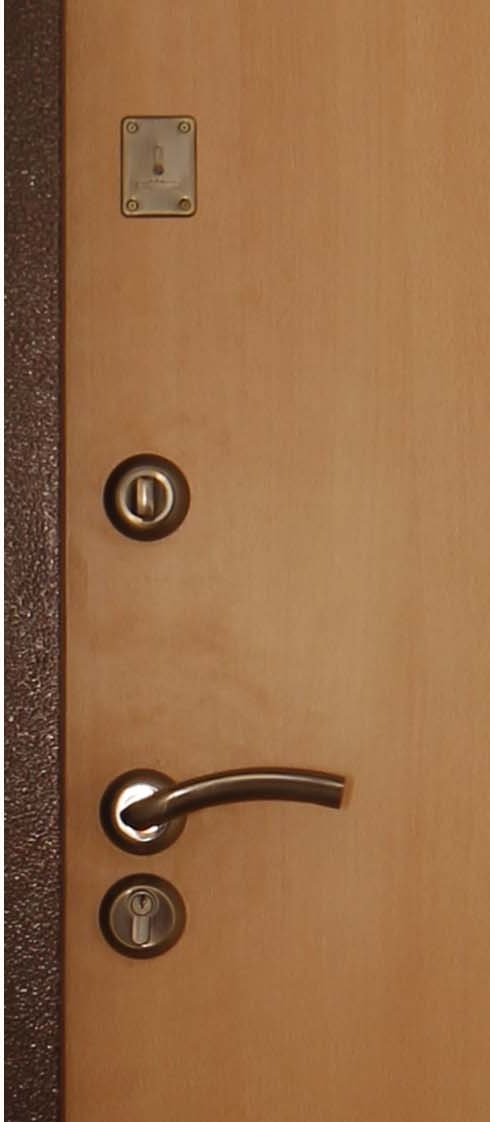 металлические двери восток москвы